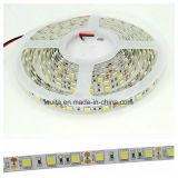 4000k 4000lumens IP 65 방수 SMD5050 LED 지구
