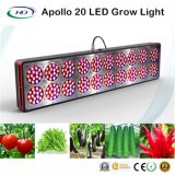 3W*300PCS wachsen hohe Lumen Apollo 20 LED Licht