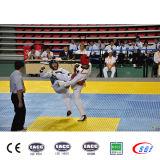 De in het groot Matten van Taekwondo van de Gymnastiek van de Matten van 12X12m EVA