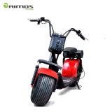 Scooter électrique de moto d'Eelctric de prix usine avec le sac