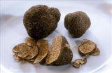 Estratto nero del tartufo, tubero Melanosporum, CAS no.: 85085-76-3