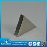 Magneet van NdFeB Petmanent van de Driehoek van diverse Rang de Hoge Magnetische
