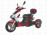 Zhenhua Kingfun 50cc мотоцикл Cdi Elec диск EPA Trike хода