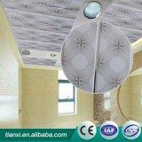 Panneau simple de décoration de plafond de PVC de bruit de modèle moderne