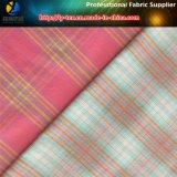 Tessuto di nylon, tessuto tinto filato di nylon con Spandex per la camicia delle donne