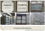 Fábrica de Foshan El más nuevo diseño del cemento seis teja de la porcelana de la cara para el aeropuerto y el diverso lugar
