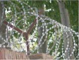 卸し業者安い価格の機密保護のための熱い浸された電流を通された鋼鉄かみそりの有刺鉄線