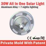 Indicatore luminoso solare esterno della Cina LED della batteria ricaricabile per il giardino
