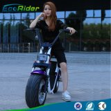 Style Citycoco Harley Scooter 2 roues scooter de mobilité pour les adultes