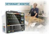 Nouveau moniteur de patient de 15 pouces pour la médecine vétérinaire