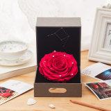 Hot Sale préservé fleurs roses cadeau pour Noël