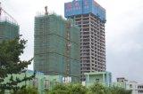 Gebäude-Maschinerie-Aufbau-Turmkran