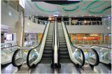 Escalera mecánica eficiente, con tecnología alemana
