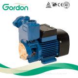 Elektrische kupferner Draht selbstansaugende Gardon Wasser-Pumpe mit Messingantreiber