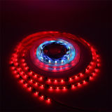 color del sueño de la tira de la fila LED de la sinfonía tres de 2835SMD el 180LED/M