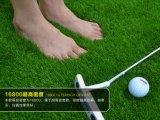 [ك] شكل عشب متحمّل اصطناعيّة لأنّ [غلف كورس]