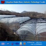 Galvaniseerden de Professionele Lage Kosten van China de LandbouwSerre van de Tunnel