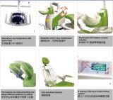 中国の歯科供給の医療機器の歯科椅子Gd-S350
