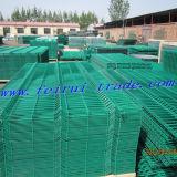 중국에 있는 높은 Quality Welded Wire Mesh Panels