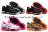2011 El calzado deportivo