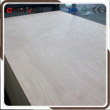 セリウムの証明書と中国製作る家具のためのポプラの合板