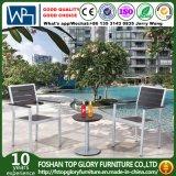 Patio de jardin dinant des jeux pour les meubles extérieurs (TG-937)