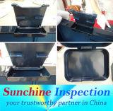 Servizi di controllo dell'articolo da cucina nel controllo di controllo di qualità di Pre-Shipment Lunchbox/della Cina