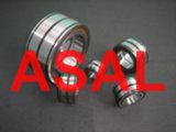 Roulement à rouleaux cylindrique (SL045024PP)