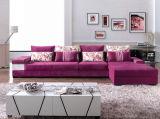 Wohnzimmer-Sofa (F126-1)