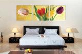 3 قطعة حديثة جدار طبع فنية صورة زيتيّة توليب يدهن غرفة زخرفة يشكّل فنية صورة يدهن على نوع خيش منزل زخرفة [مك-235]