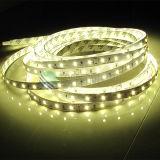 Luz de tira de la cinta del alto brillo 30LEDs los 6W/M LED