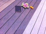 Heißer Absatzprogramm-Farbe(zweifarbiges) WPC Decking 2018