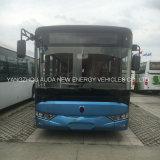 Wijd Gebruikte Hete Verkoop 12m het Elektrische Voertuig van de Bus van de Bus Elektrische