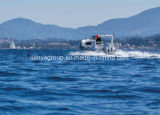 Шлюпки яхт Liya 19feet роскошные Semi твердые новые