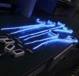 세륨 RoHS IP65는 3years 보장을%s 가진 LED 지구 빛을 방수 처리한다