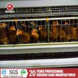 H печатает клетку на машинке цыпленка с полноавтоматической системой