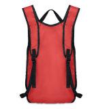 Farbe Sports Rucksack mit kundenspezifischem Firmenzeichen