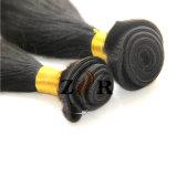 最上質の自然なカラー加工されていない人間のブラジルのバージンの毛