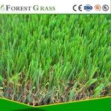 人工的な泥炭(FS)を美化している庭フィールド人造の草