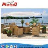 Mobiliário de Jardim de vime exterior mobiliário de Lazer Wicker/cadeiras de vime e mesa de jantar
