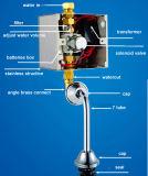 Cisterna de urinario automático oculto