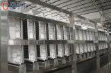 Acier inoxydable 304 10 tonnes de cube de machine de glace pour la Malaisie