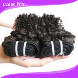 Les cheveux humains brésiliens d'enroulement crépu de prix usine tissent pour des femmes de couleur
