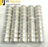 Tutti i generi di forte magnete di anello del neodimio