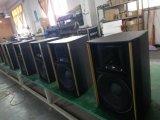 """Qsn Audio professionnel Dual 10"""" haute puissance de l'Orateur XT10"""