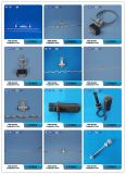 Stay Rod with Plate Galvanized Steel /Electric power pipe fitting