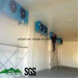 Cella frigorifera, parti di refrigerazione, conservazione frigorifera, surgelatore