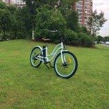 كبيرة محرّك منخفضة خطوة شاطئ درّاجة كهربائيّة