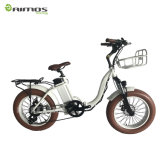 Vélo électrique pliable de vente chaud de gros pneu frais pour des Étrangers de loyer