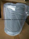 02250137-895 Le filtre à air Sullair de remplacement
